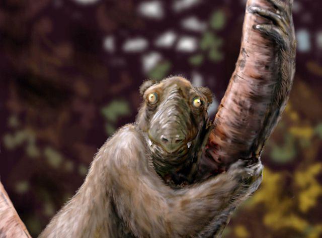 artist's rendering of Megaladapis edwardsi, an extinct lemur species