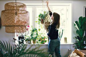 Woman hanging planter