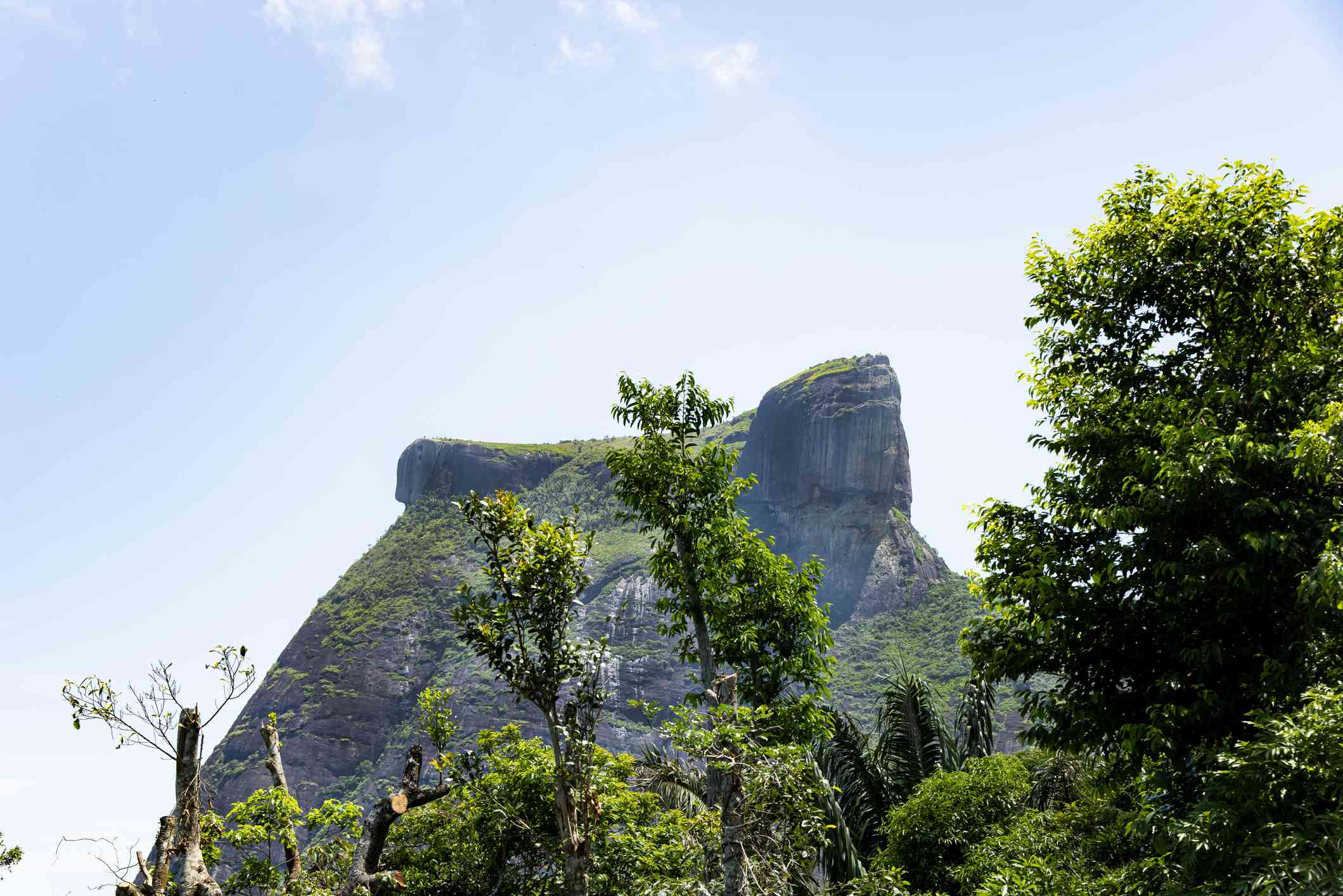 Pedra da Gávea, a stone mountain with what appears to be a human face at the top surrounded by tall green trees in the foreground and a blue sky in the background