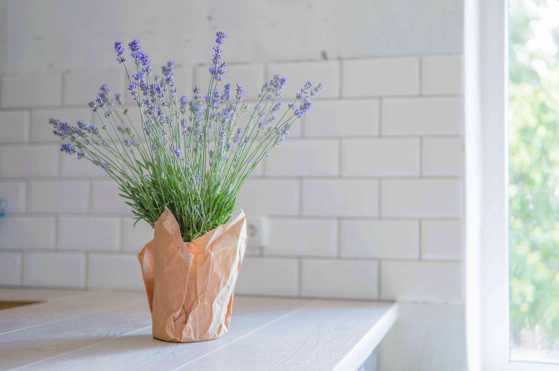 Kitchen interior with lavender flower in front