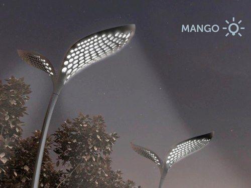 mango light image