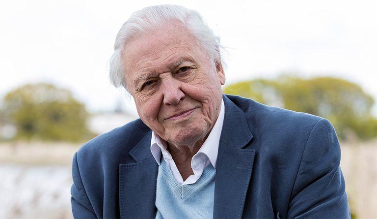 David Attenborough 'llegando a un acuerdo' con la pérdida de memoria (pero no, no se jubila)