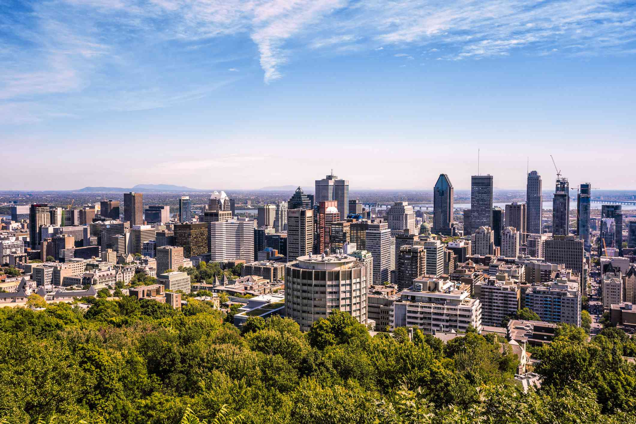 view of downtown Montreal, Canada's high rise buildings, lush green trees, and blue sky with light white clouds taken from Mount Royal
