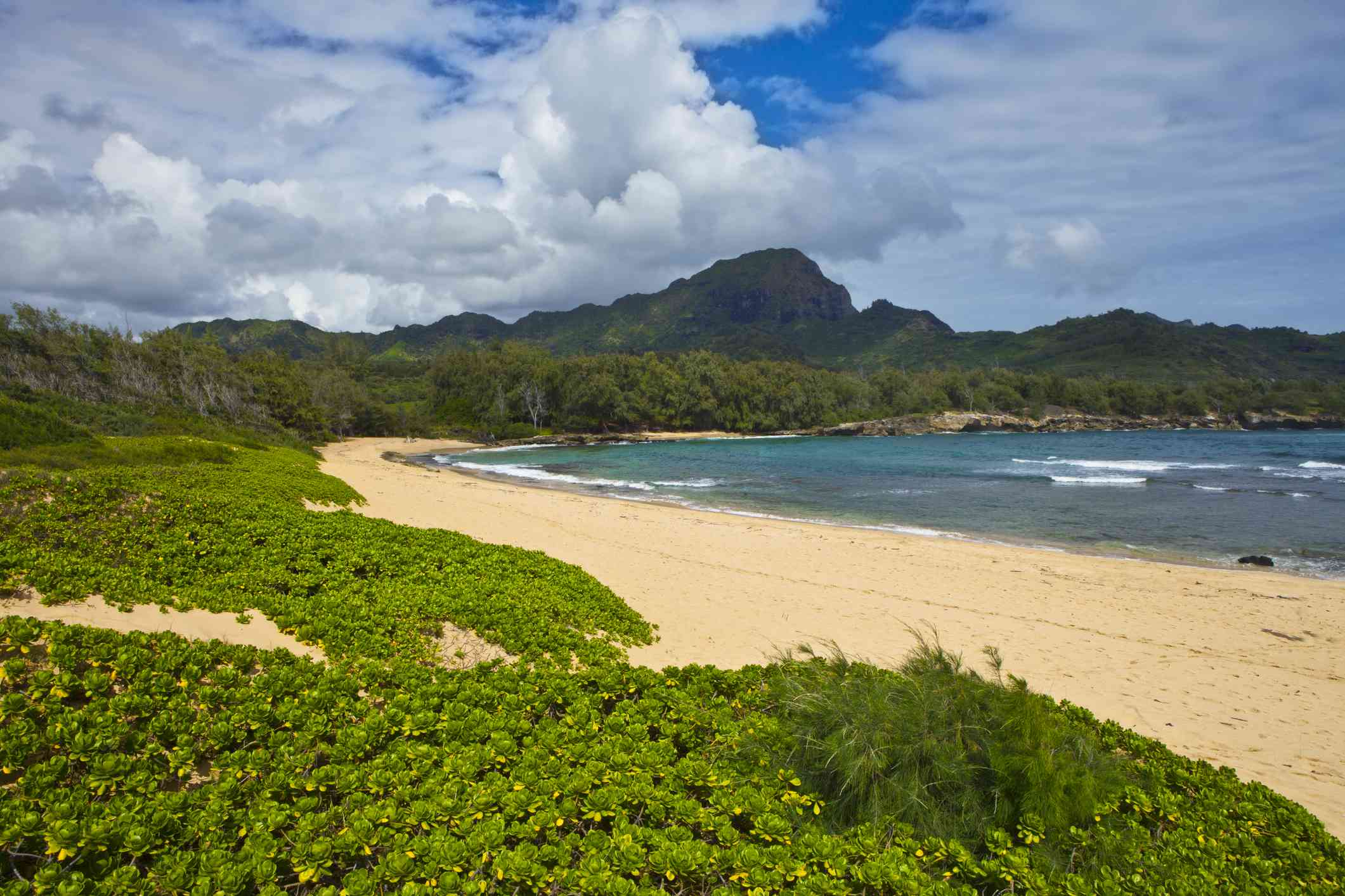 lush green foliage, clean sand, and blue water at Mahaulepu Beach, Kauai, with mountains, blue sky, and white, fluffy clouds in the distance