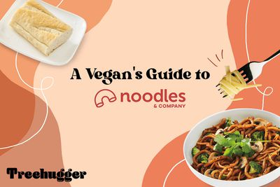 vegan noodles and co