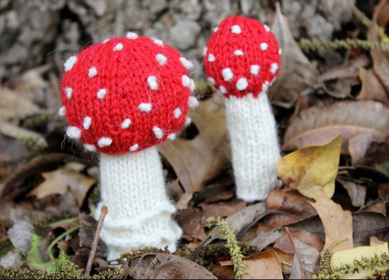 Two knitted mushrooms sitting outdoors among leaves and grass