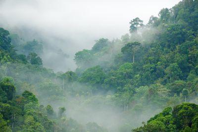 Kaeng Krachan National Park in Thailand