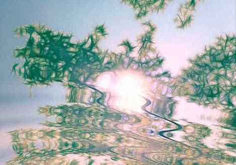 Dancing with filters ( Fractalius & Water Ripples )