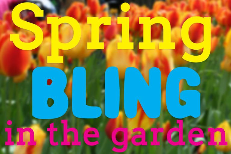 Spring flowers with text before them