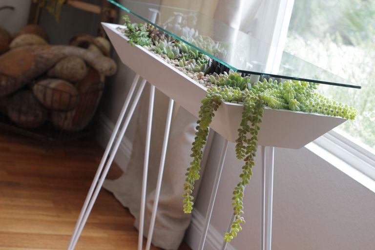 Esta mesa de terrario te permite llenar los muebles con plantas de interior