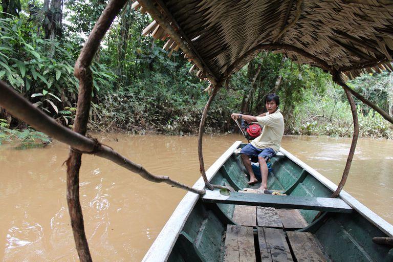 La tribu amazónica tiene los corazones más sanos jamás estudiados