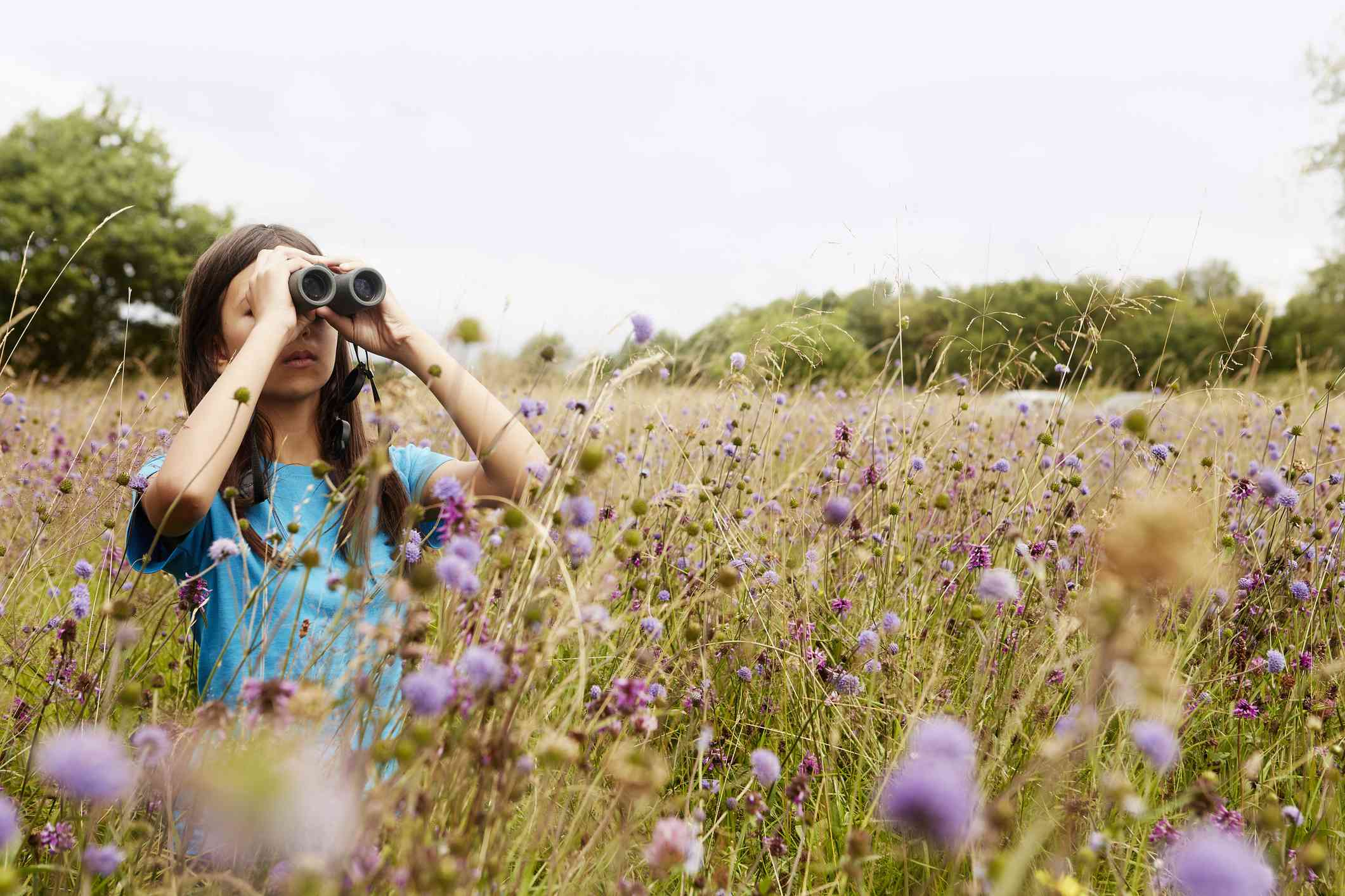 A woman viewing wildlife from a safe distance