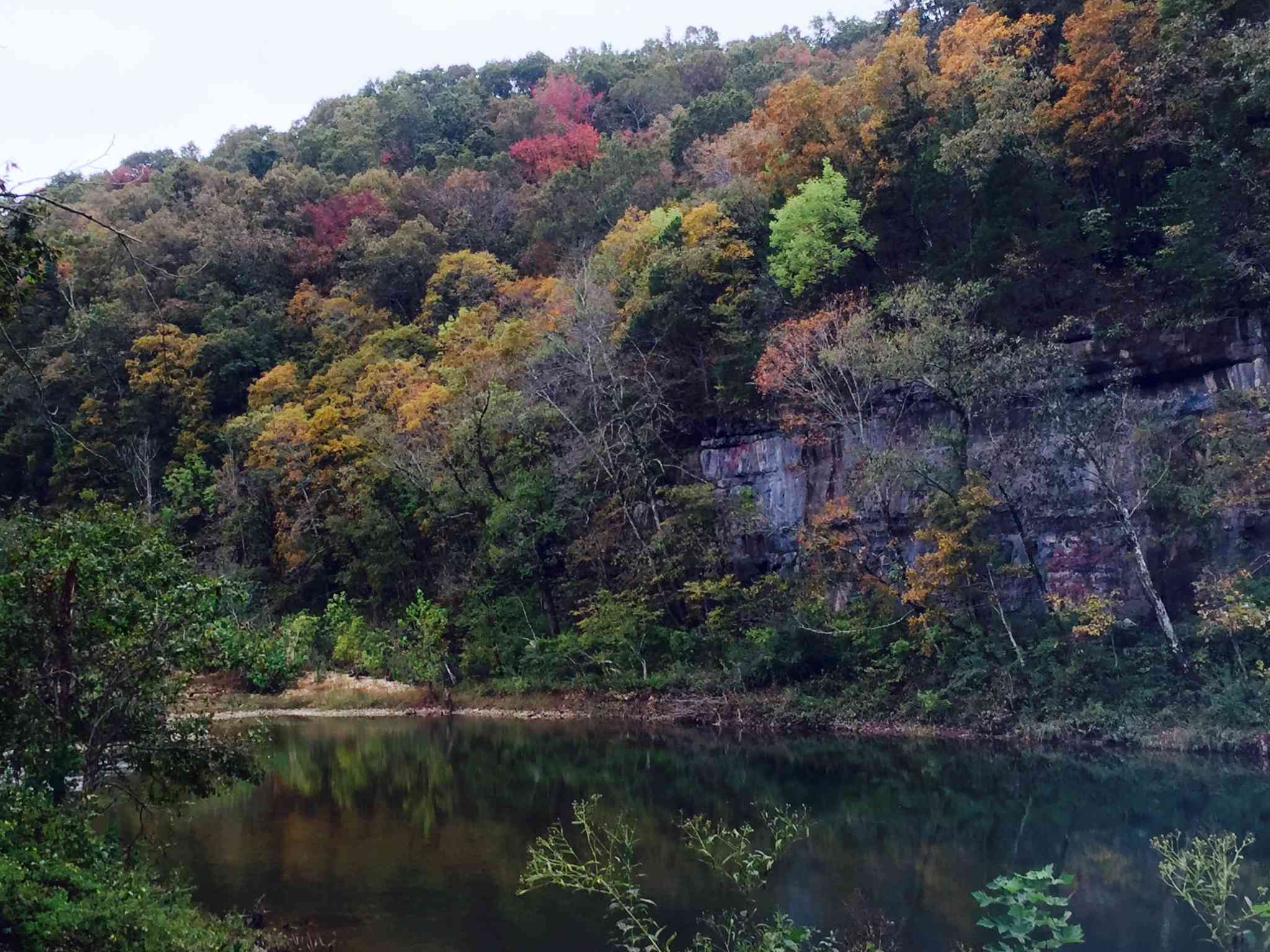 Forest of lush trees in fall color above a small pond at the North Fork Recreation Area in Mark Twain National Forest
