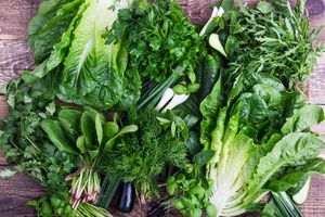 Bunches of leafy greens including arugula, romaine, cilantro, green onion, and more