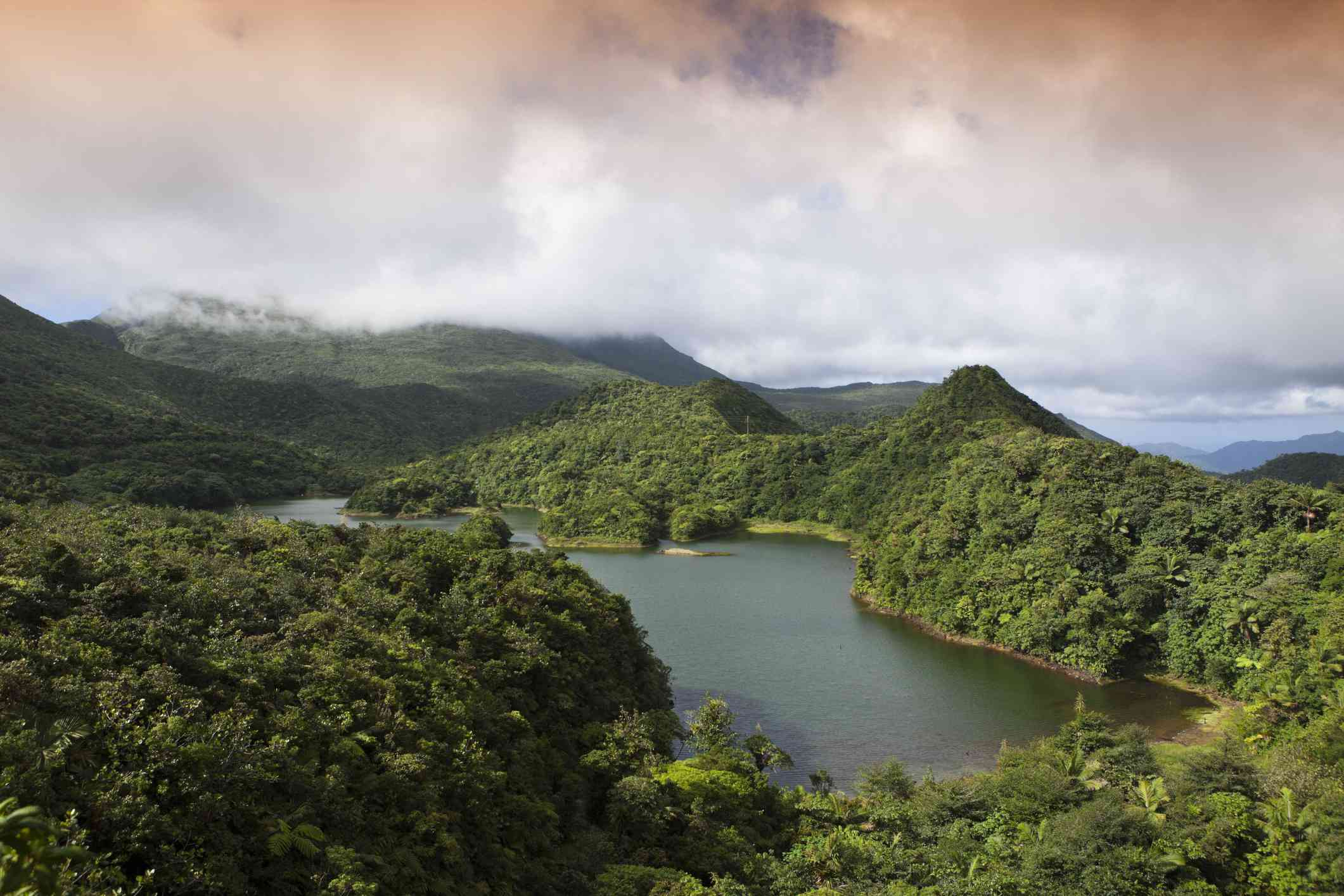 aerial view of the green hills of Dominica