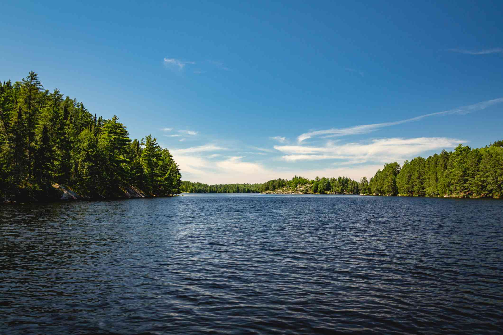 shores of Lake Kabetogama with lush green trees on both sides and blue skies above in Voyageurs National Park, Minnesota