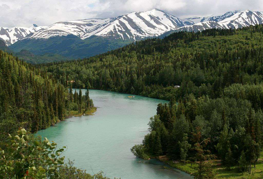 The Kenai River flows through an evergreen forest in the shadow of a snowy mountain