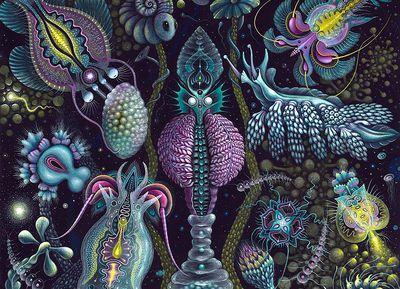 fantastical marine creature paintings Robert Steven Connett