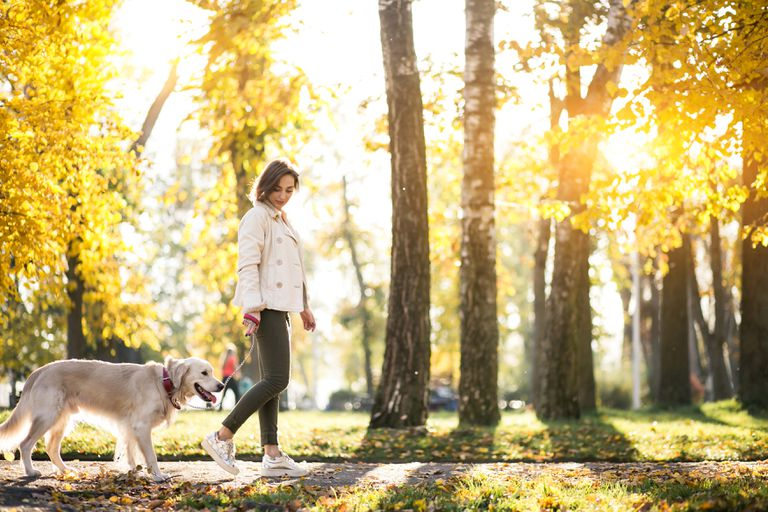 Vivir cerca de espacios verdes puede ayudarte a vivir más