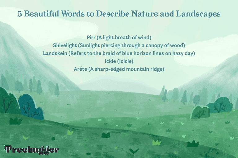 color illustration of 5 beautiful words that describe nature and landscapes against mountainscapes