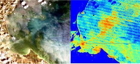 Satélite de agua azul analiza las floraciones de algas tóxicas del espacio