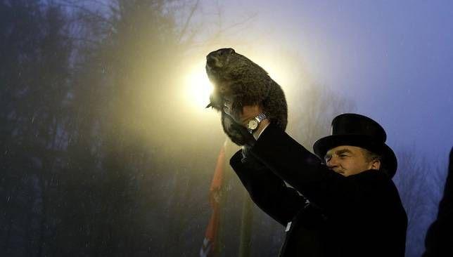 ¿Por qué celebramos el día de la marmota?