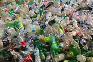 Plastic bottles at a recycling factory in Dhaka, Bangladesh.