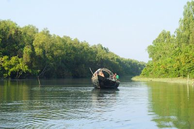 The crooked canal flows through the Kukri Mukri mangrove