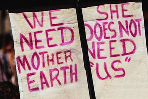 Mother Earth signs protesting protection and respect.