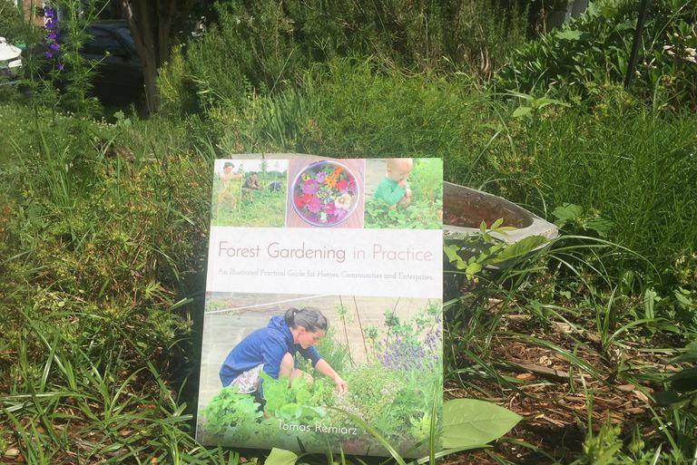 La jardinería forestal finalmente obtiene el libro que se merece