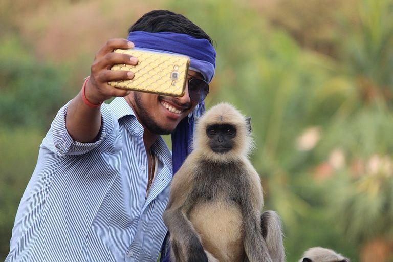 Costa Rica quiere detener las selfies de animales