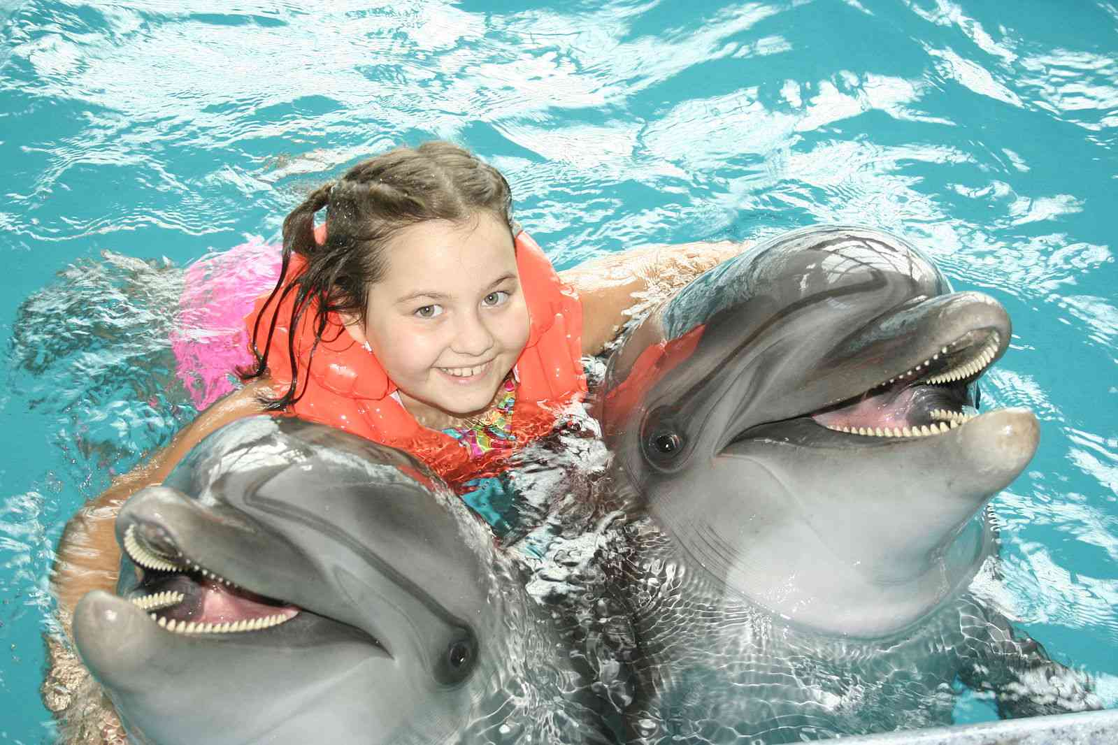 girl hugs two dolphins