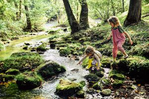 children play in a stream