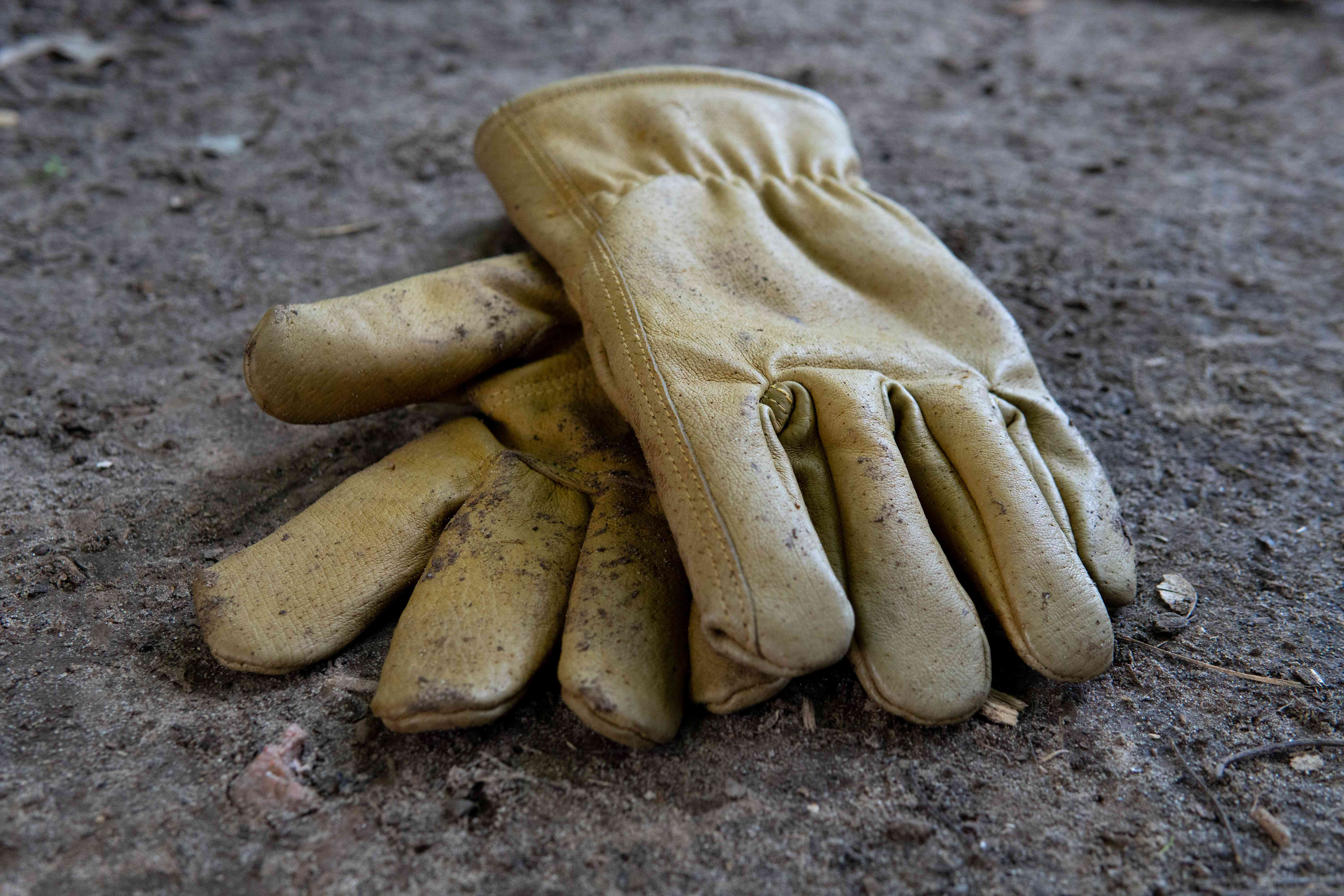 weathered leather gloves on dirt floor