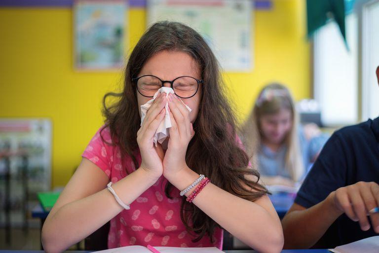 Las escuelas se preparan para la influenza porcina