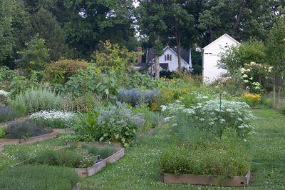 A backyard potager garden