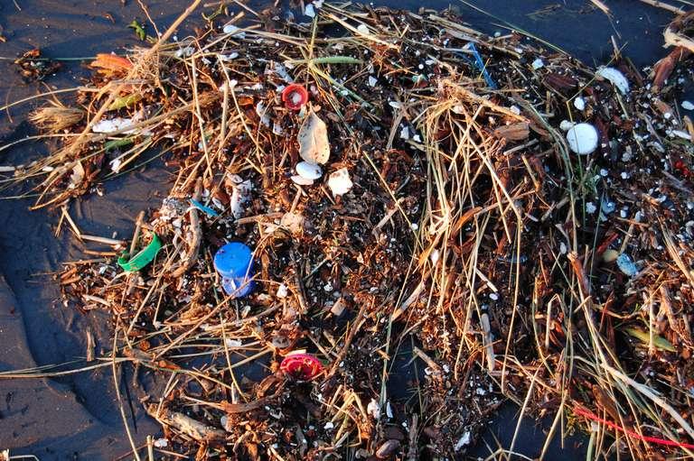Bomba de relojería: plásticos en el océano