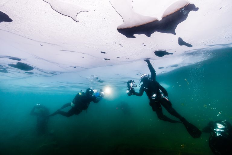 Oil Spill in ocean - view from under water