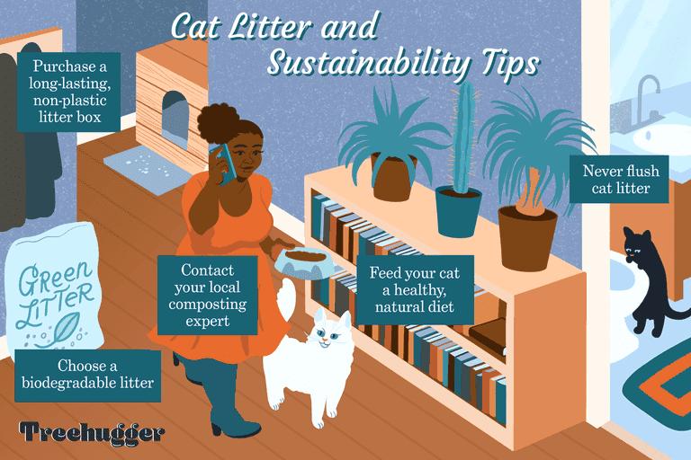 greener ways to dispose of cat litter illustration