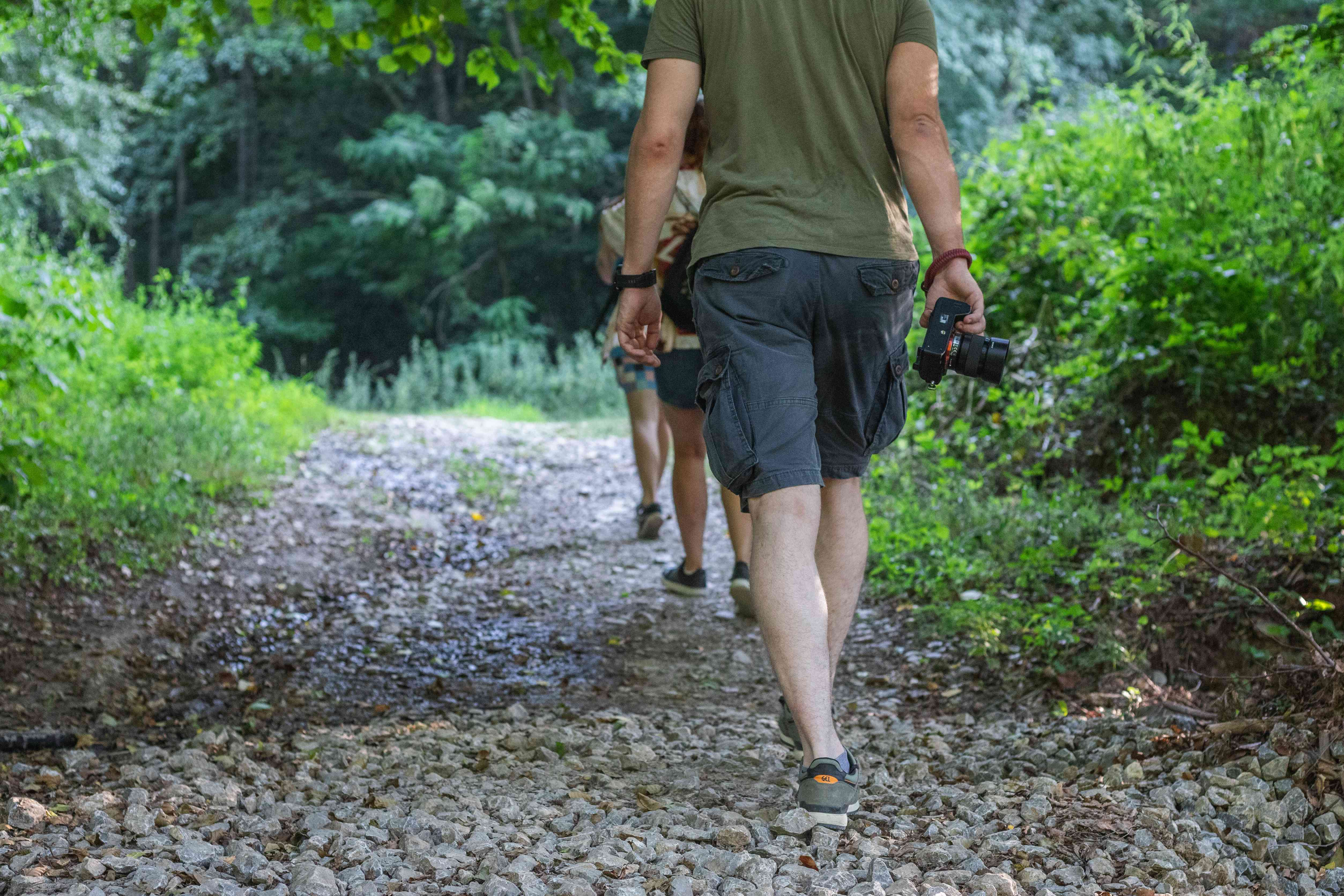 group of hikers stay on rocky trail as they head into woods