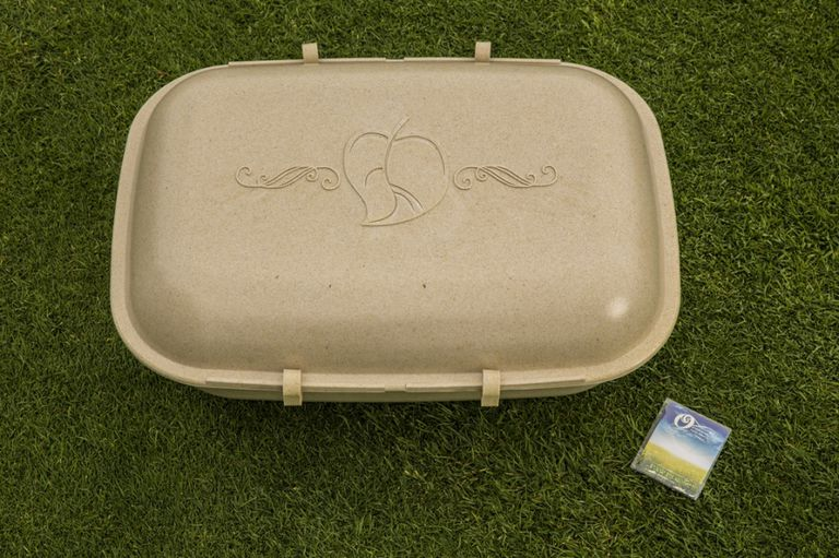 Paw Pods ofrecen una digna opción de entierro biodegradable para mascotas