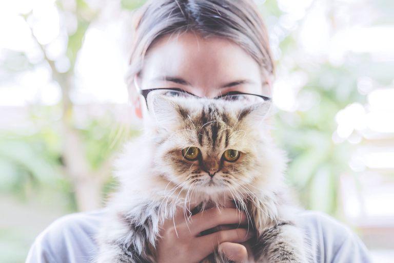 Si tu gato es neurótico, puede ser tu culpa