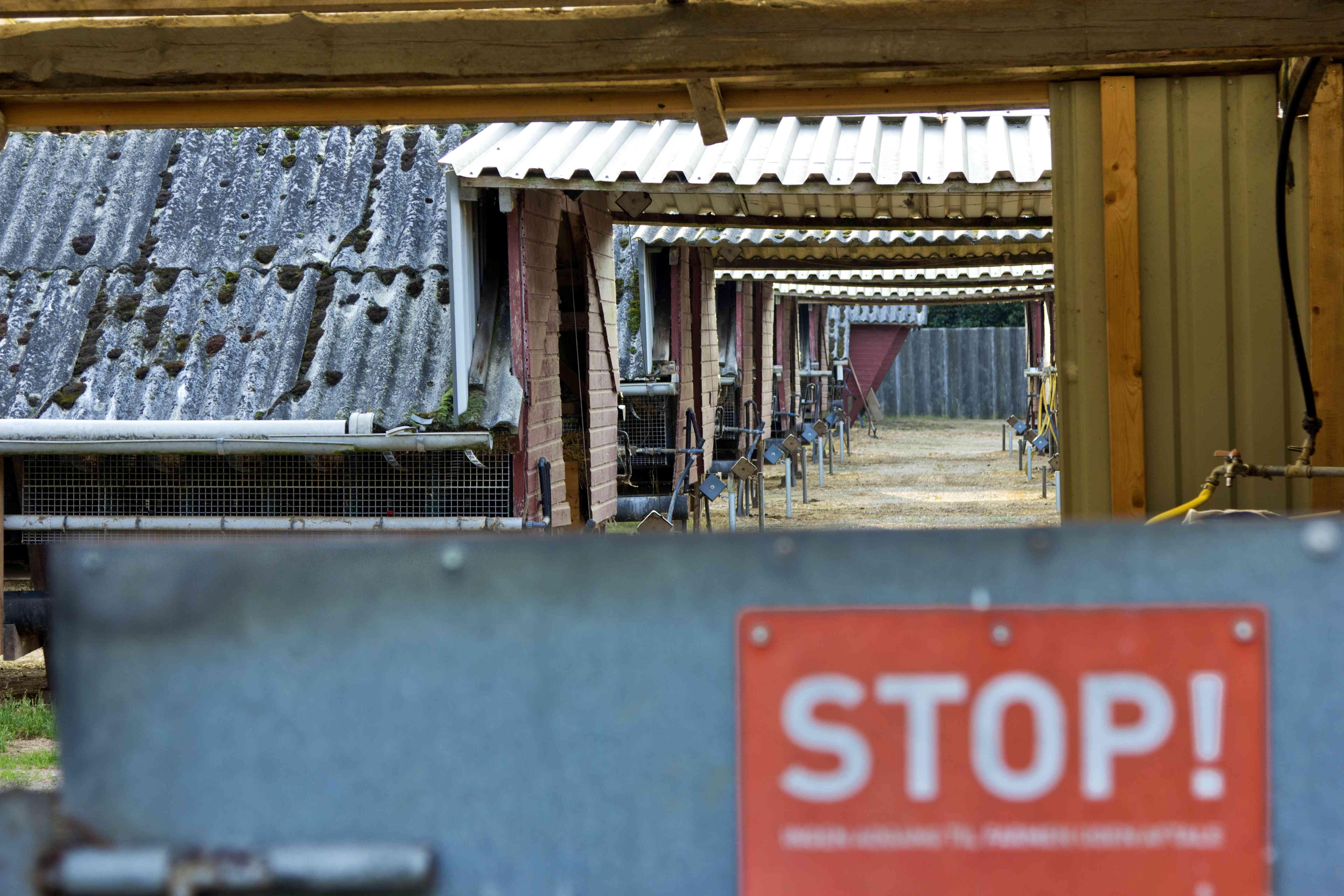 Mink breeding farm exterior