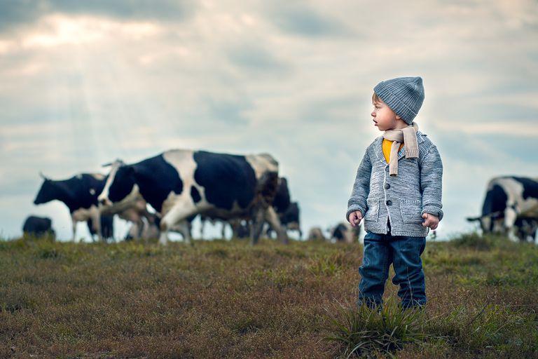 Los seres humanos componen una pizca de vida en la Tierra, pero nuestro impacto negativo es enorme