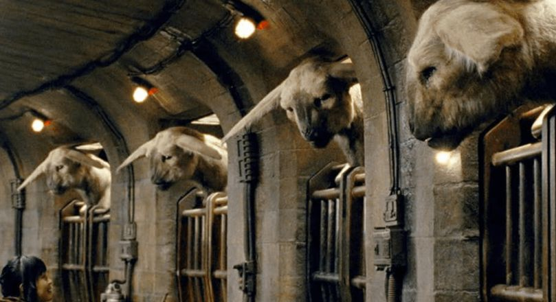 'The Last Jedi's' fathiers were inspired by characteristics of both lions and horses.
