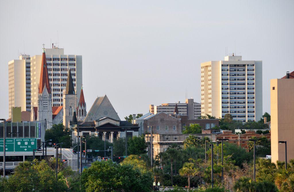 Jacksonville skyline and trees