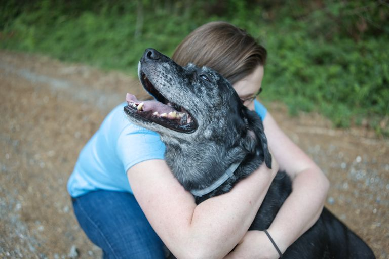 woman in blue shirt hugs older black dog with gray muzzle and open mouth