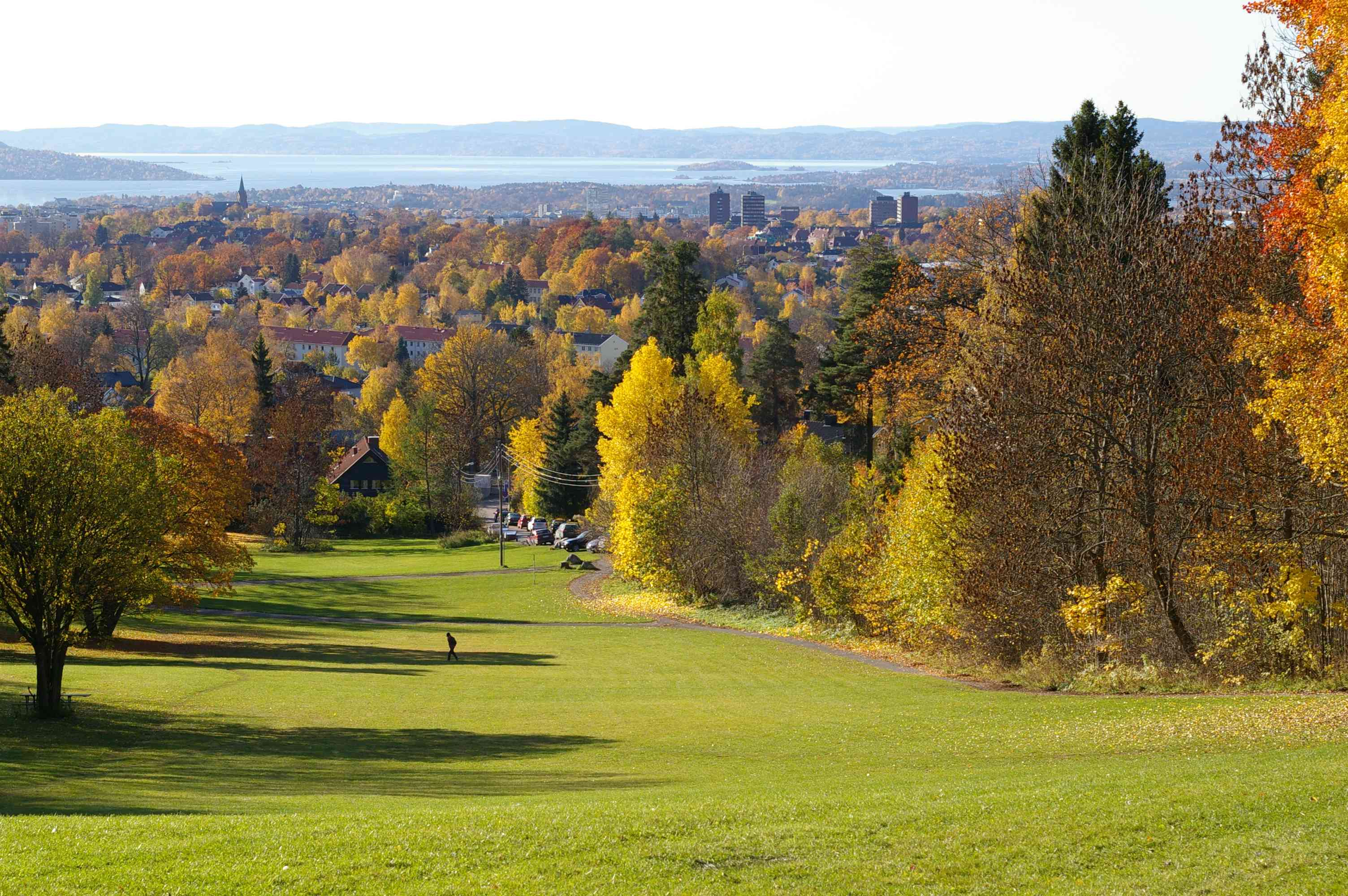a wide, green lawn with trees in shades of orange, green, and pale green with a waterway in the distance in Oslo