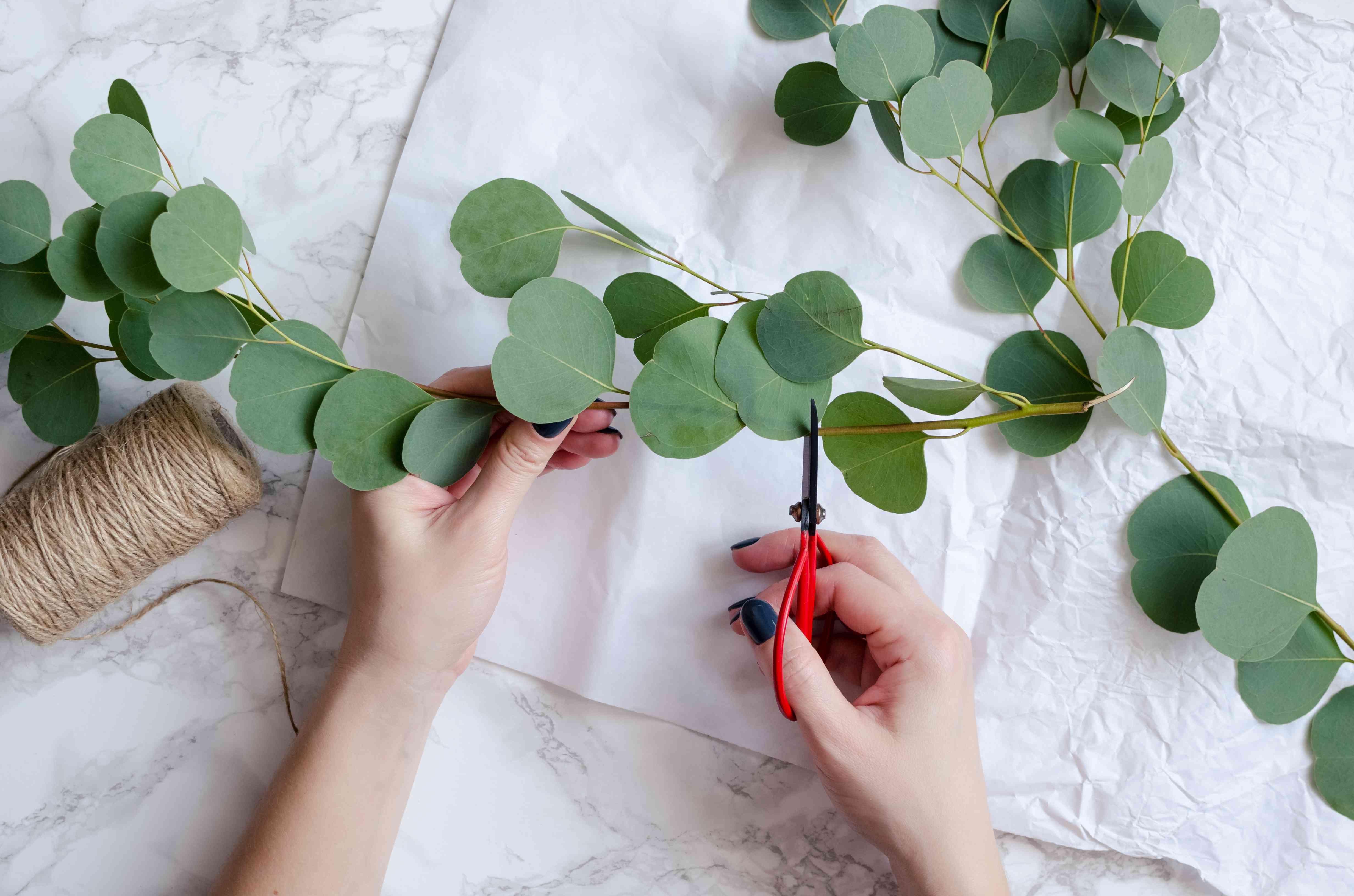 Florist hands make eucalyptus bouquet