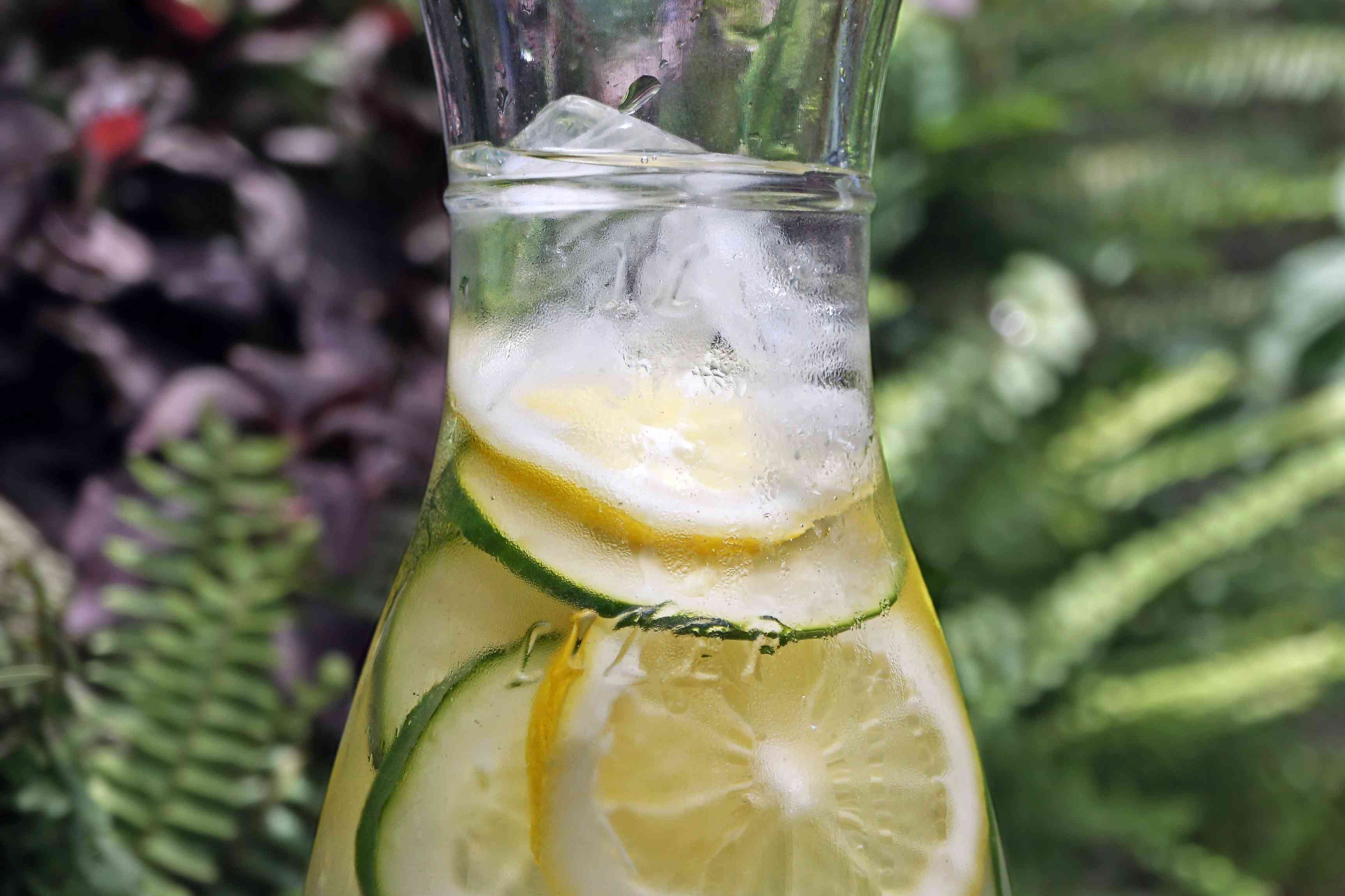 water and citrus in glass pitcher